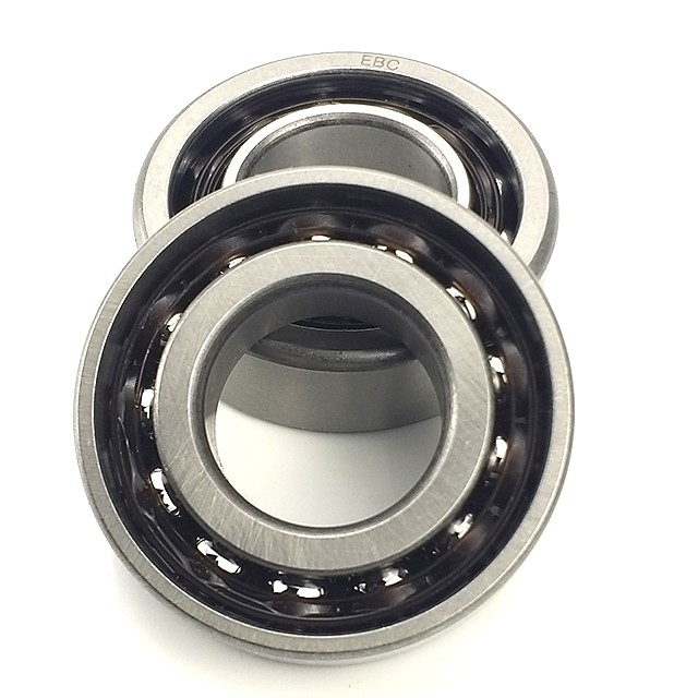 SKF 317SFF  Single Row Ball Bearings