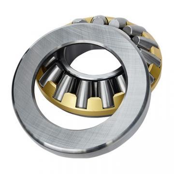 INA GS81217  Thrust Roller Bearing